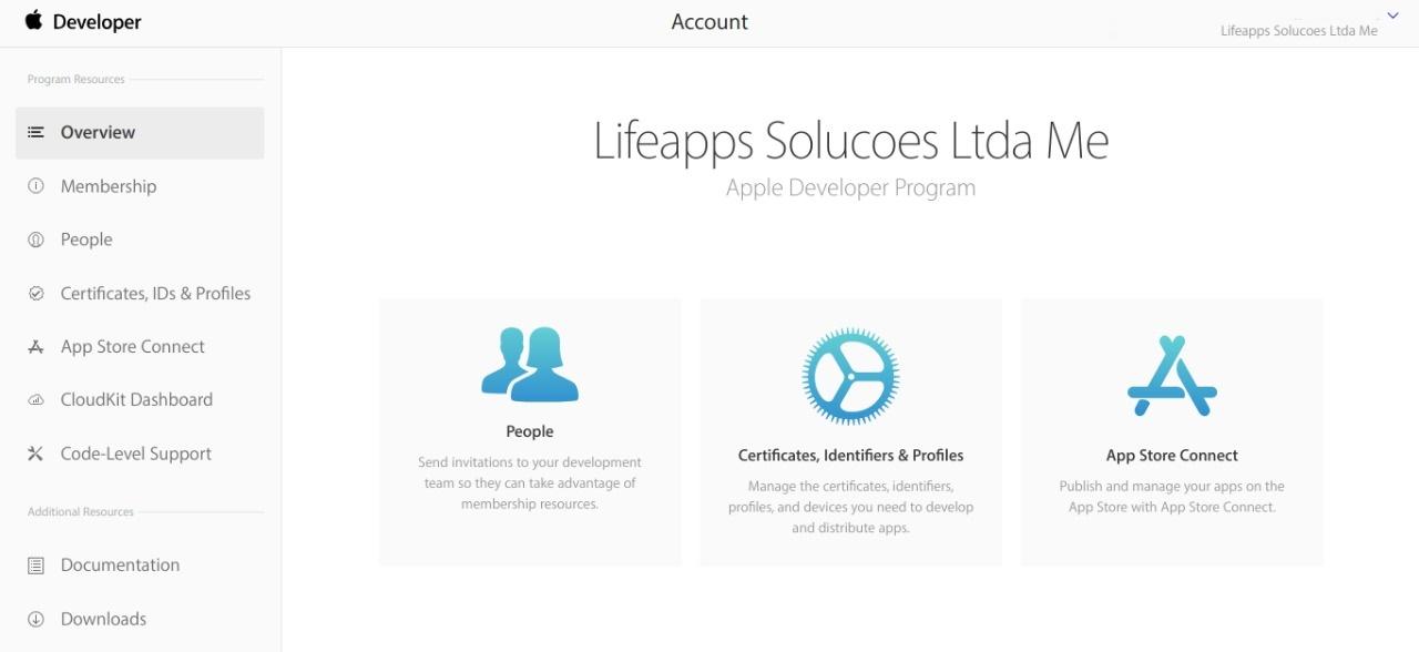 Overview - Account Developer