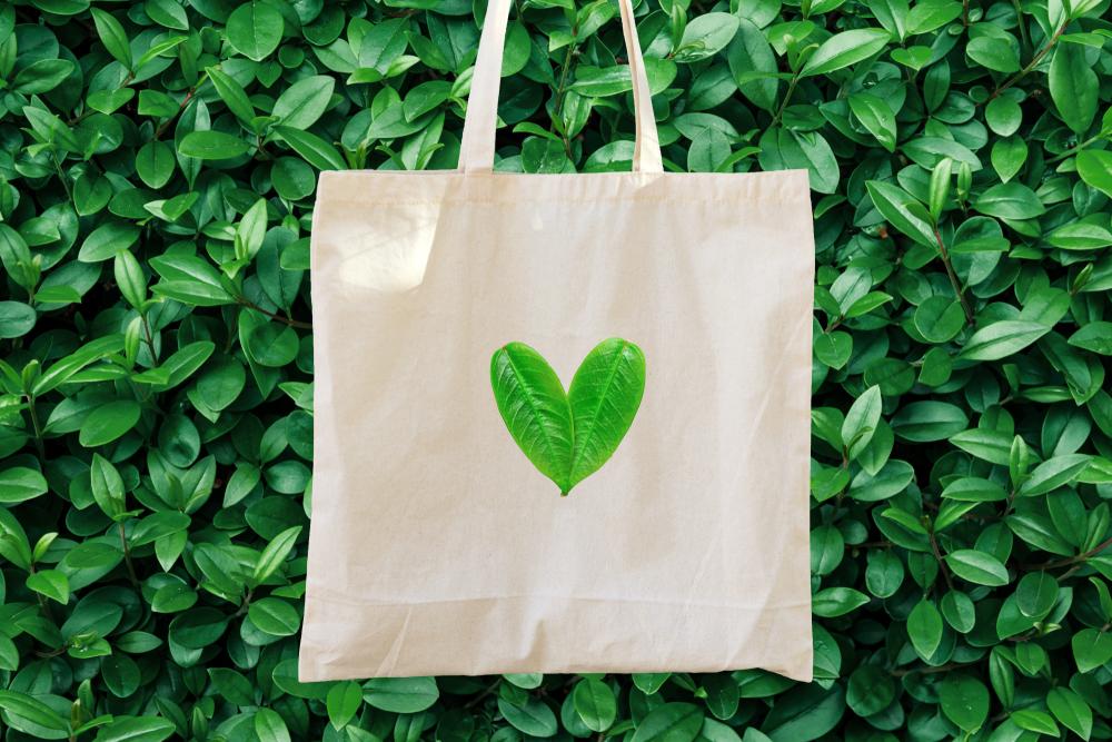 Ações de sustentabilidade: como o e-commerce pode ajudar na preservação do planeta